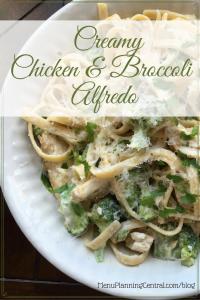 Creamy Chicken & Broccoli Alfredo