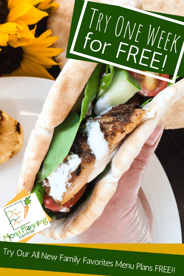 Try our all new family favorites menu plan for free